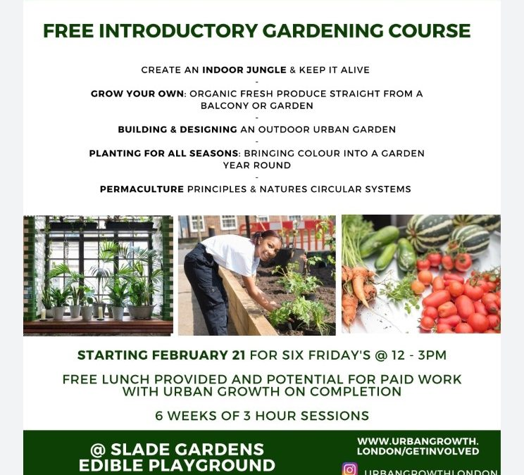 FREE INTRODUCTORY GARDENING COURSE