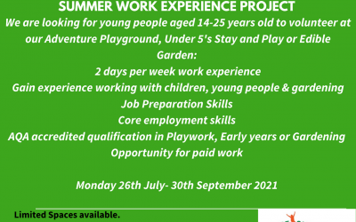 Summer Work Experience project